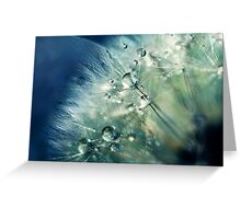 Dandelion Drama Greeting Card
