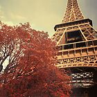 The Eiffel Tower during Autumn by danielasynner