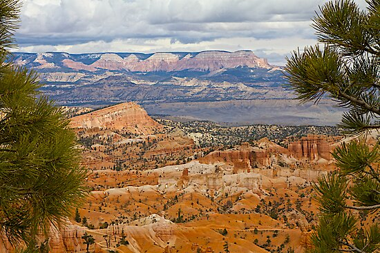 Bryce and Beyond by John Butler
