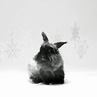 Snow Bunny  by L2Photography