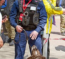 Policeman & Sniffer Dog at the London Marathon by Keith Larby
