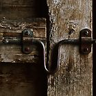 Barn Door by Dlouise