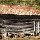 Old Rustic Building by Ginger  Barritt