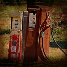 Got Gas? by Ginger  Barritt