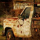 Rusty Truck by Ginger  Barritt