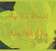 Banner - FHC - Top Ten Winner by aprilann