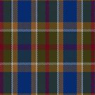02252 Sock Hop Tie (Unidentified) Artefact Tartan Fabric Print Iphone Case by Detnecs2013