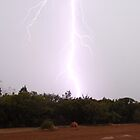Daytime lightening by Christina Thomas