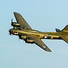 Boeing B17 Sally B by mlphoto