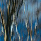 Abstract ~ Trees by Anne Staub