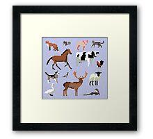 Animals of the UK Framed Print