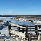 Salisbury Beach Reservation On Ice by Uni356