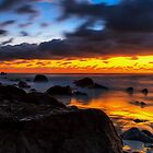 Snapper Rocks Morning Gold Coast Queensland by MikeAndrew