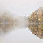 A Misty Sunrise - Pieman River, Tasmania by DestnUnknown