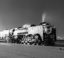 Union Pacific 8444 (c) by Henri Bersoux
