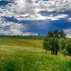 Green scenery by Jessy Willemse