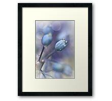 Underneath A Blue & Cloudless Sky ... Framed Print