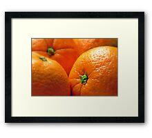 Orange You Glad? Framed Print
