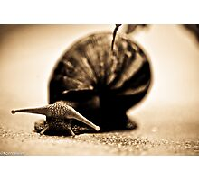 Happiness is...use slow life...SOLD, Got Featured Work Photographic Print