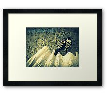 butterfly shoes Framed Print