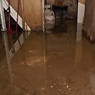 Flooded Basement Jupiter by addieturner62