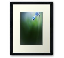 Take your time... Framed Print