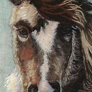 Natures Fiber Pretty Pony by Dena Kotka-Holtz