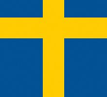 Smartphone Case - Flag of Sweden - Vertical by Mark Podger