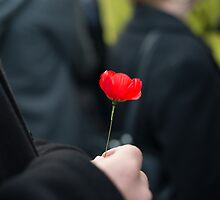 The Poppy - Lest We Forget by Ivan Kemp