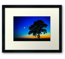 Sunset With A Silhouette Of A Lonely Tree Framed Print