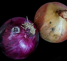 Red and White Onions by mlphoto