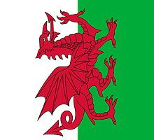 Iphone Case - Flag of Wales  - Vertical by Mark Podger