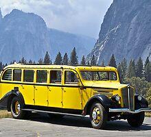 1937 White Touring Bus/Yosemite by DaveKoontz