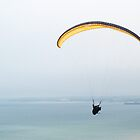 Paraglider by Chris Day