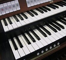 Rows of Keys - Section of Organ Keyboard by Kathryn Jones