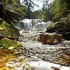 Halls Falls  Tasmania by MisticEye