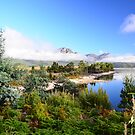 Lake Burbury  Tasmania by MisticEye