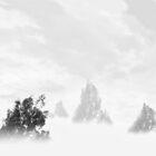 ©HCS Fog Zone I by OmarHernandez