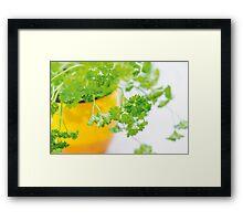 Parsley Framed Print