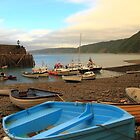 Clovelly Harbour by Paul Bettison
