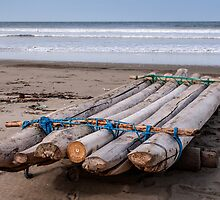Fishing Raft - Playas, Ecuador by Paul Wolf