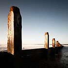 Marske Groynes by PaulBradley