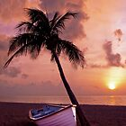 The Boat by Jim Semonik
