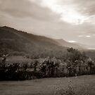 Kao Sok Pinhole Sepia Landscape by Duane Bigsby