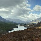Glen Affric by VoluntaryRanger