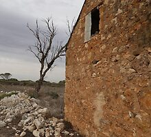 Monarto Zoo Ruins Pt.2 by Stuart Daddow Photography