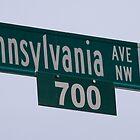 Pennsylvania Avenue by Cyn Piromalli