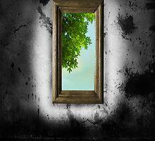 Fenster by harietteh