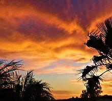 April Sunset by tvlgoddess
