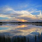 calm reflections by cliffordc1